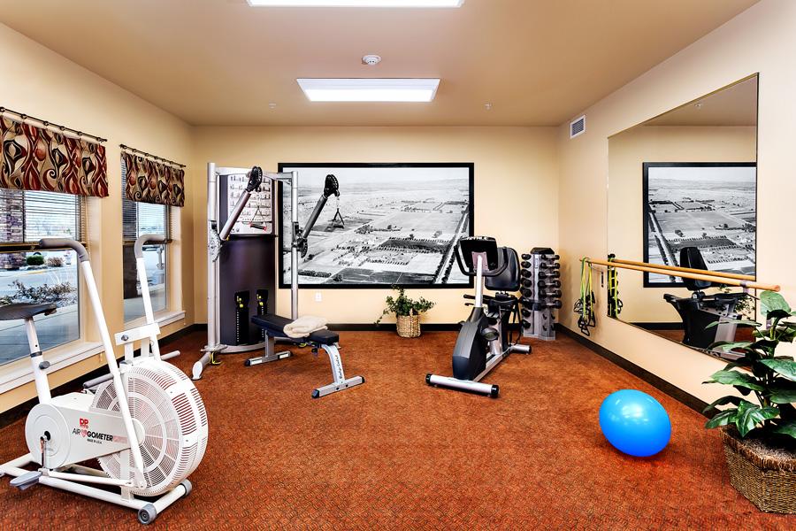 msbl-fitness