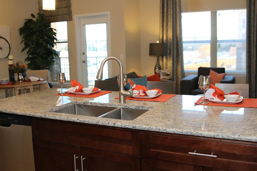 pslm-suite-kitchen-2